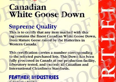 WhiteGoose